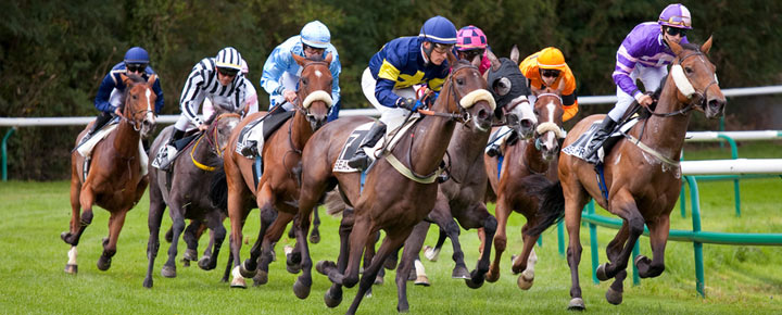 Rejouer un cheval gagnant : une bonne idée ?